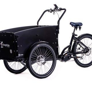 Cargobike-DeLight-1